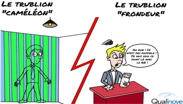 trublion_cam_l_on_frondeur_t